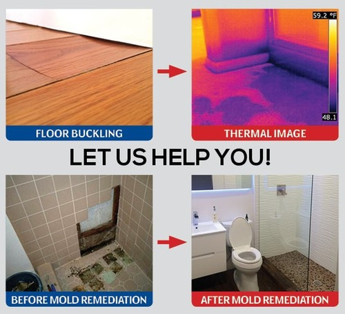 Mold Remediation & Leak Detection | Oasis Solutions of Florida