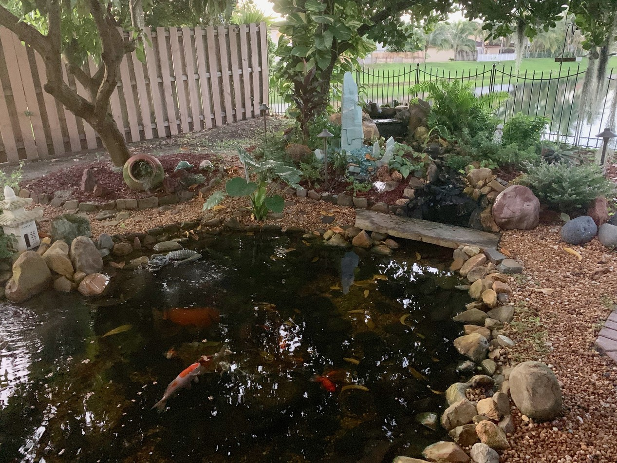 Ponds with Led Lighting | Universal Seven Elements Global