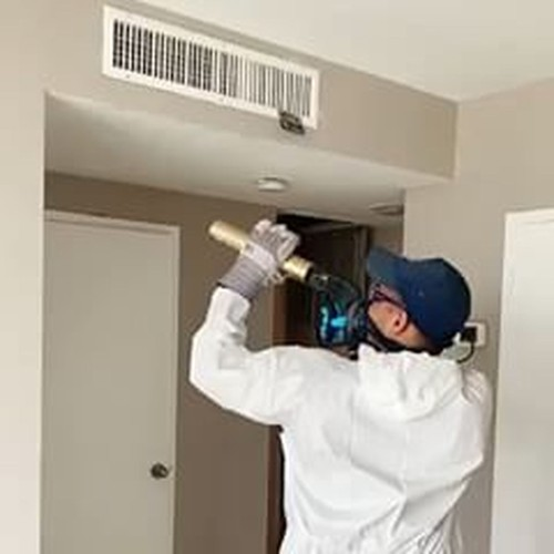 Mold Damages | Advanced Restoration Company Inc
