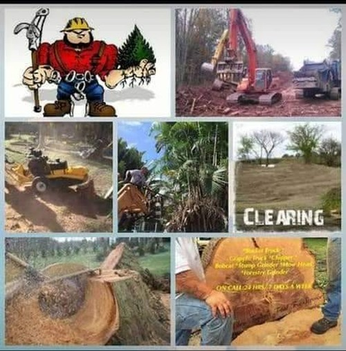 Landscape Designs & Tree Trimming | Lawn Stars Landscaping