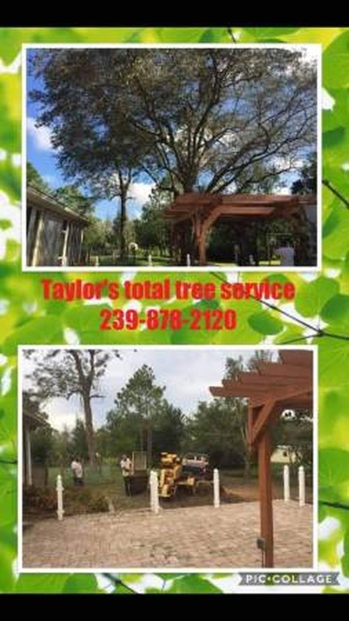 Residential Tree Services | Southern Arbor Services