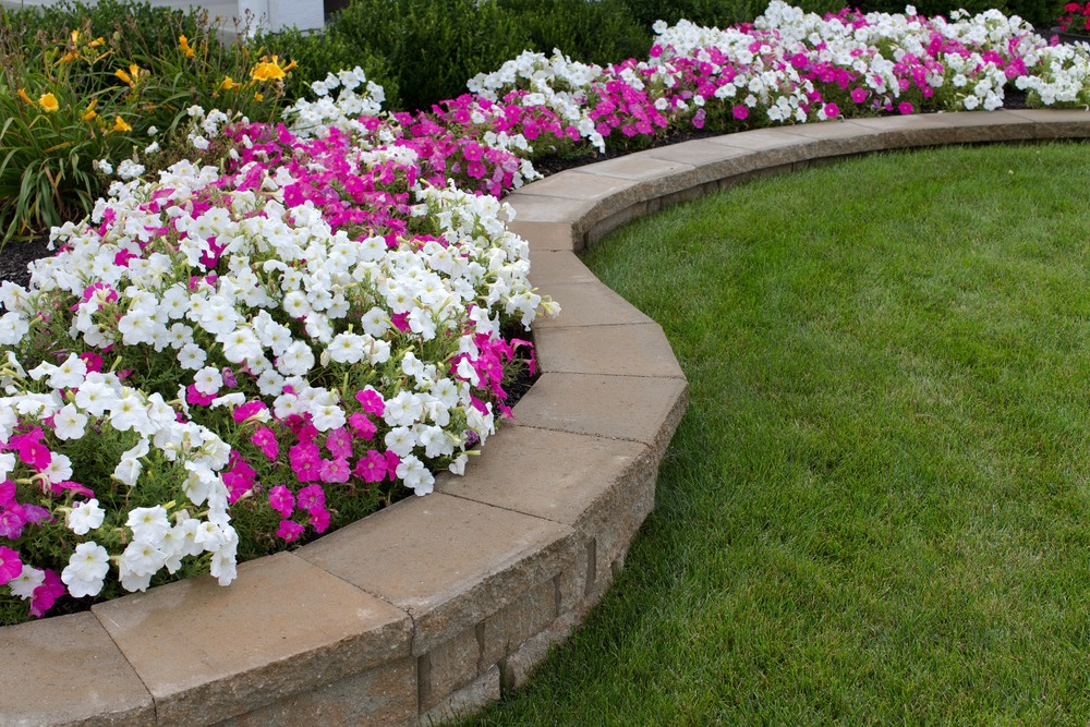 Landscaping|CoralSpringsNursery