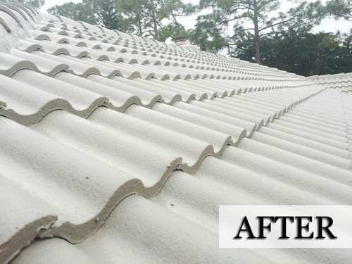 Roofing Services | Construction Roofing Services