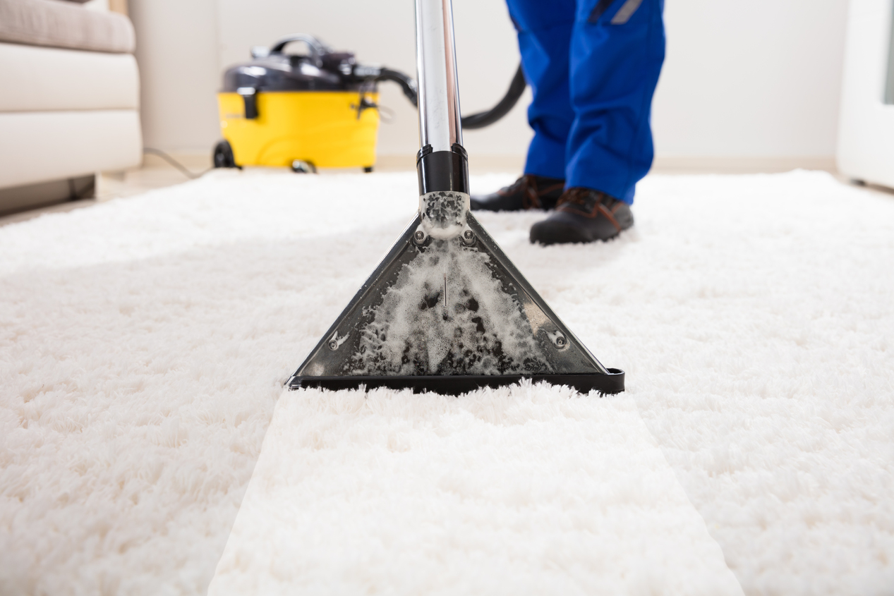 $99 (3 room carpet cleaning)
